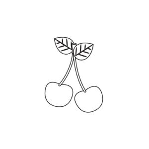 Owoce suszone i kandyzowane